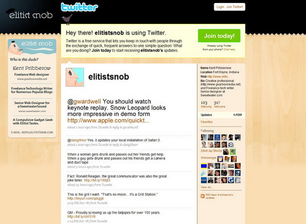 twitter design, twitter layouts elitists snob