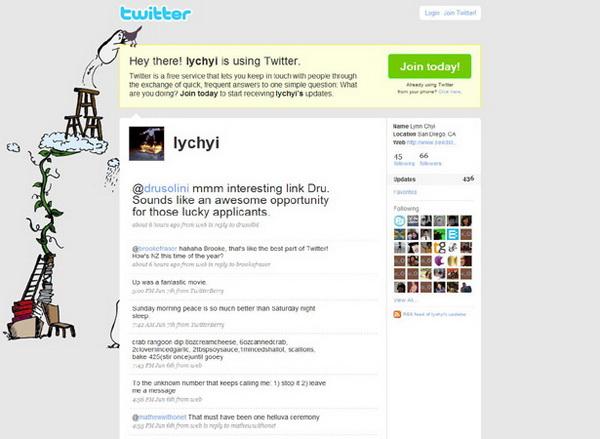 twitter layout, twitter layouts lynn chyi