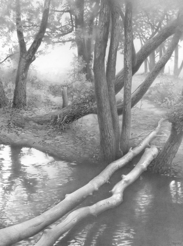 pencil drawing river tree