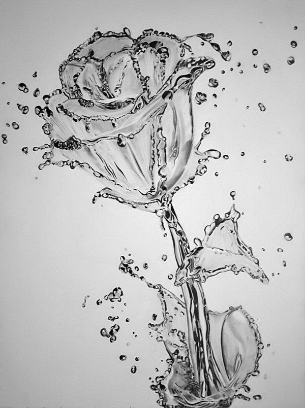 pencil-drawing-water-flower