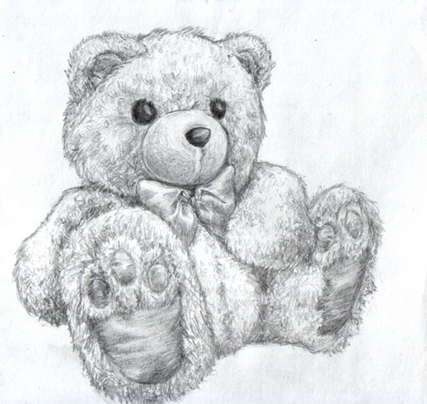 pencil drawings of teddy bears