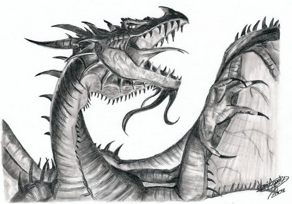 pencil drawings of western dragon