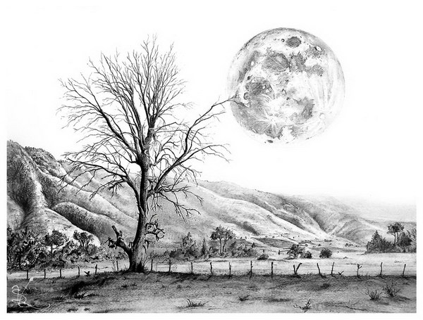 tree-and-moon-pencil-drawing
