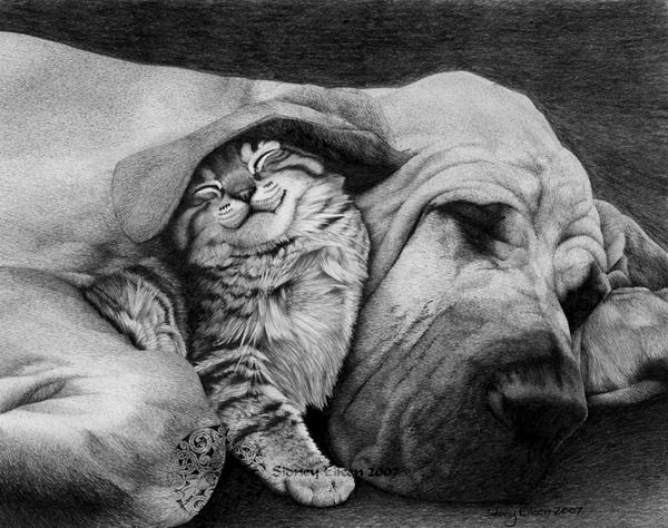 dog drawing 1