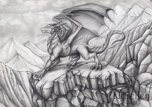 dragon drawing 10