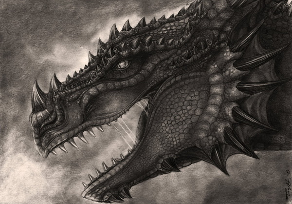dragon drawing 12