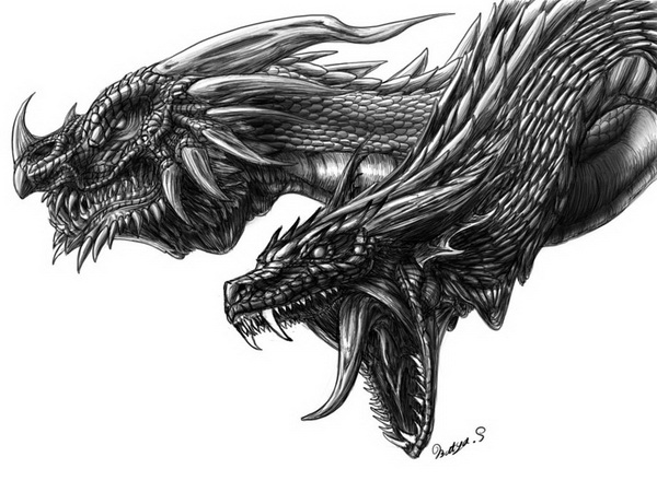dragon drawing 6