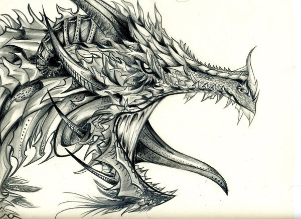 dragon drawing 7