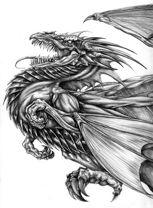 dragon drawing 8