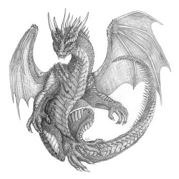 dragon drawing 9