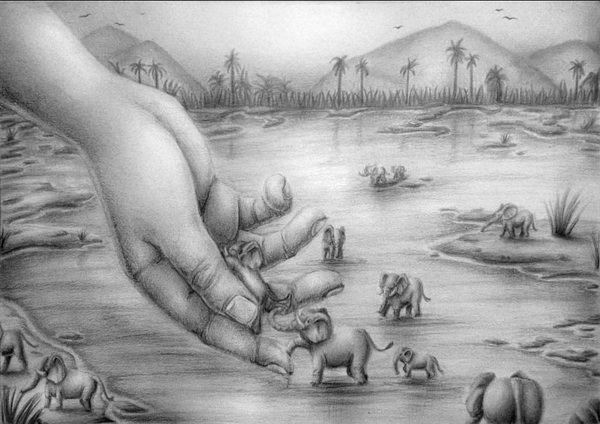 elephant drawing 12