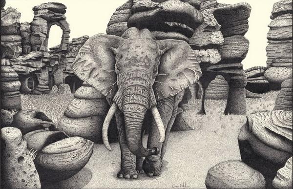 elephant drawing 5
