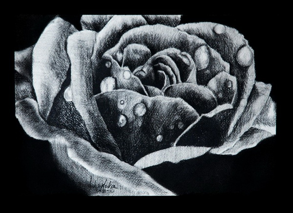 flower drawing 5