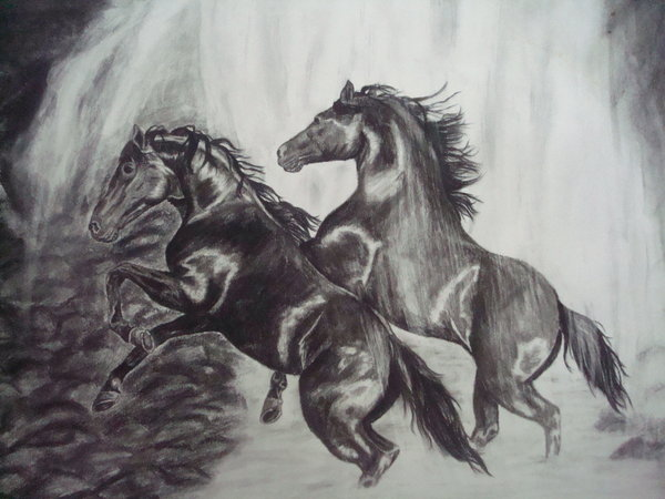 horse drawing 8