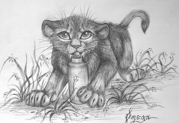 lion drawing 8