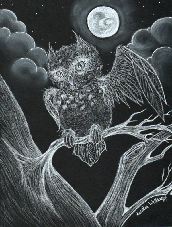 owl drawing 8