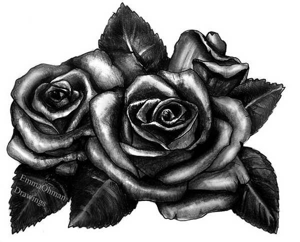10+ Beautiful Rose Drawings for Inspiration 2017