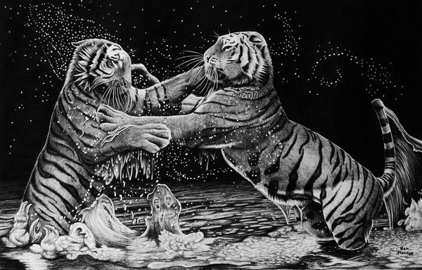 tiger drawing 1