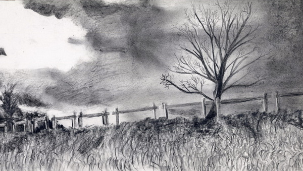 tree drawing 8