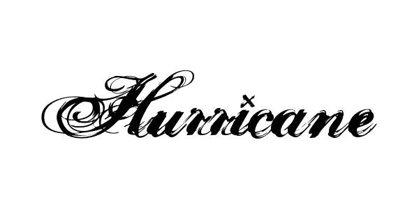 hurricane supadupaserif 42