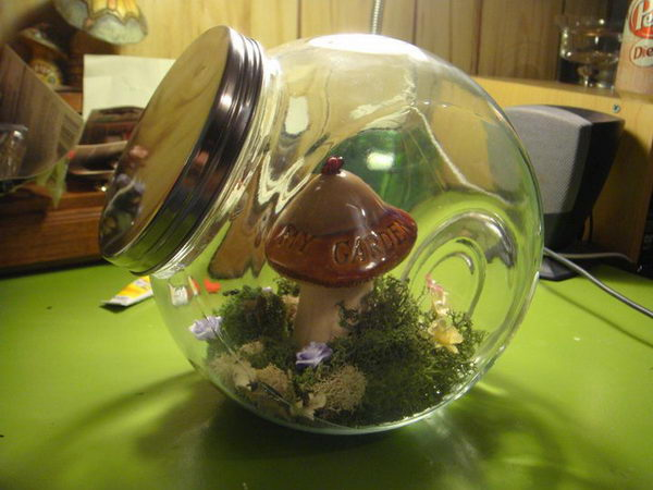 terrarium-for-faeries-30