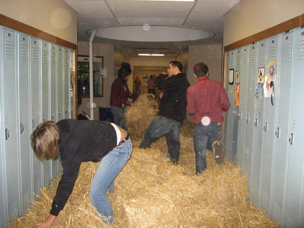 20 hay in the hallway