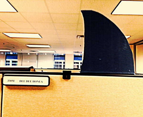 Shark Week Cubicle Decoration.