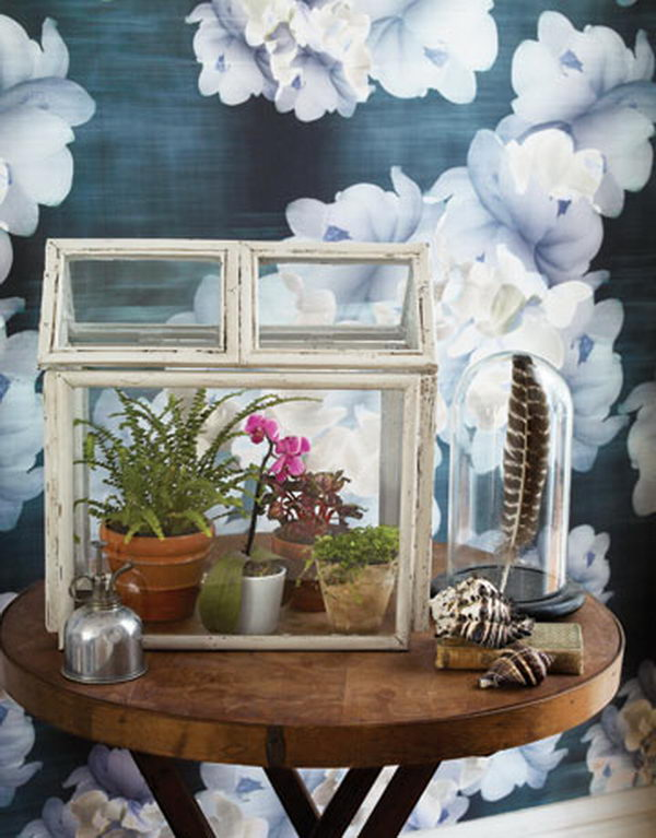 Mini Greenhouse. Recycle old wooden picture frames and build a Victorian style indoor oasis for your hothouse plants.