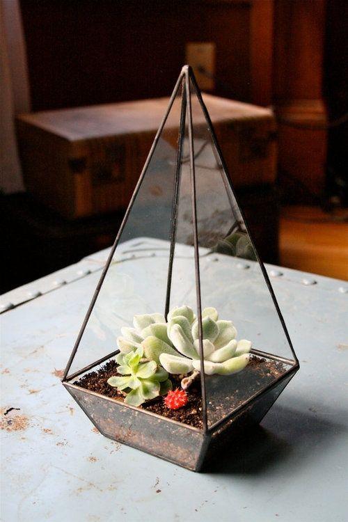 Pyramid Terrarium.