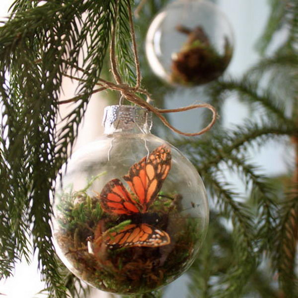 Hang Terrarium Ornaments on Tree. These ornaments are actually fake terrariums, by using dried sheet moss or reindeer moss, the ornament isn't technically growing so it requires no care. Perfect for those of us who are excel at forgetting to water things.