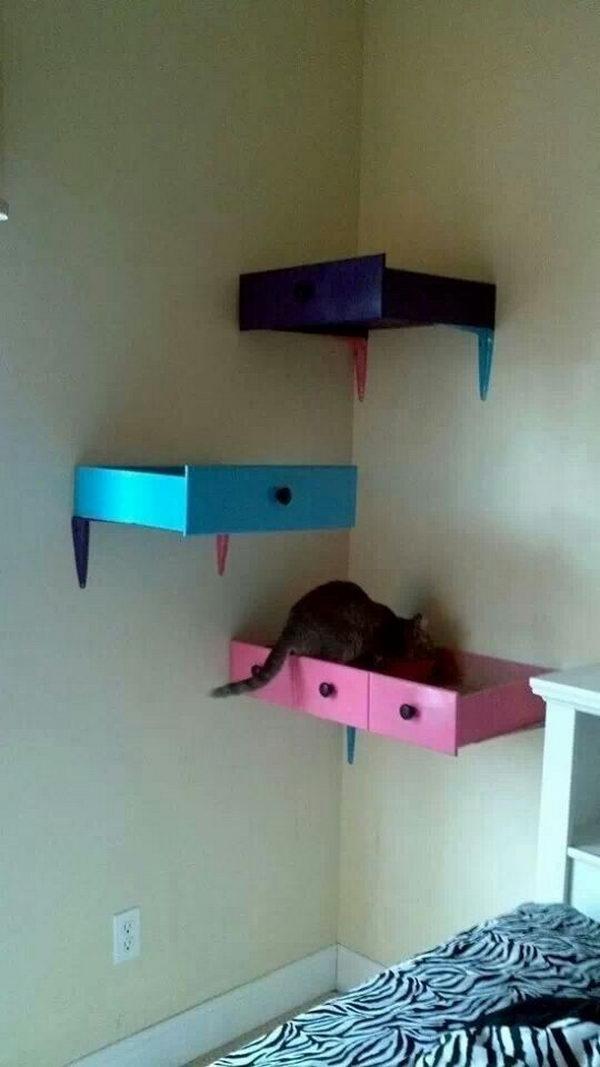 Diy cat box bed
