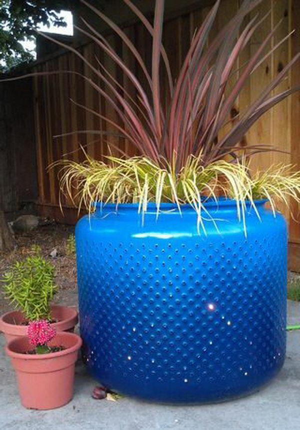 Washing Machine Drum Planter.