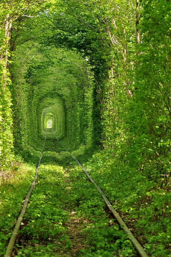 Located near the town of Kleven, this luscious green train tunnel is a popular spot for lovers' promises.