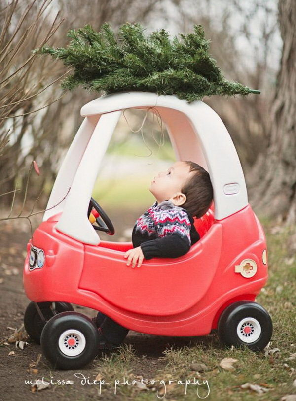 Baby Driving Tree.