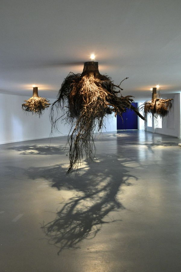Tree roots emerge from the ceiling. Shadow art is a unique form of sculptural art that creates patterns on a wall or canvas using shadows or silhouettes. It is a cool art activity at home to entertain your family and friends.