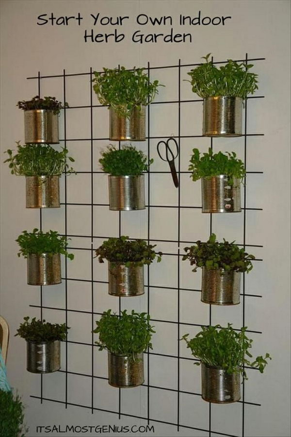 Inside Herb Garden Ideas
