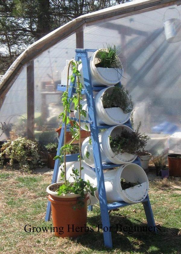 Xô và thang làm vườn thẳng đứng.  Nó cho phép thực vật mở rộng lên trên thay vì phát triển dọc theo bề mặt của khu vườn.  Không chiếm nhiều không gian và trông rất đẹp cùng một lúc.
