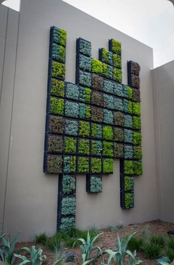 Wall of succulents. It allows plants to extend upward rather than grow along the surface of the garden. Doesn't take a lot of space and look so beautiful at the same time.