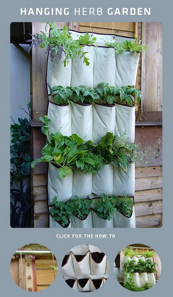 DIY shoe rack hanging herb garden. It allows plants to extend upward rather than grow along the surface of the garden. Doesn't take a lot of space and look so beautiful at the same time.