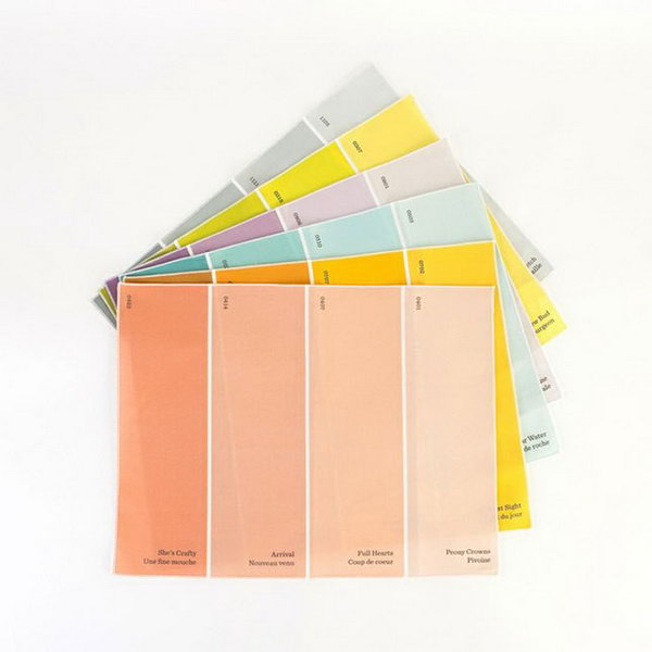 Paint Chip Placemats. Impress the graduate for your love of color with this set of two paint-chip palettes. It's time to replace paper napkins or plastic utensils with these paint chip placemats.