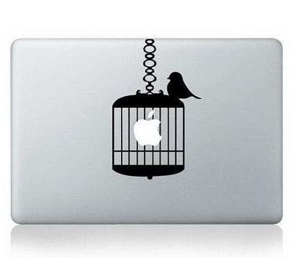 Birdcage engraving ideas.