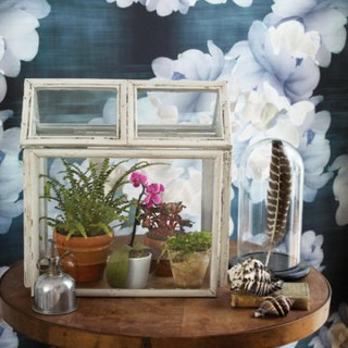 20 Creative Terrarium Containers
