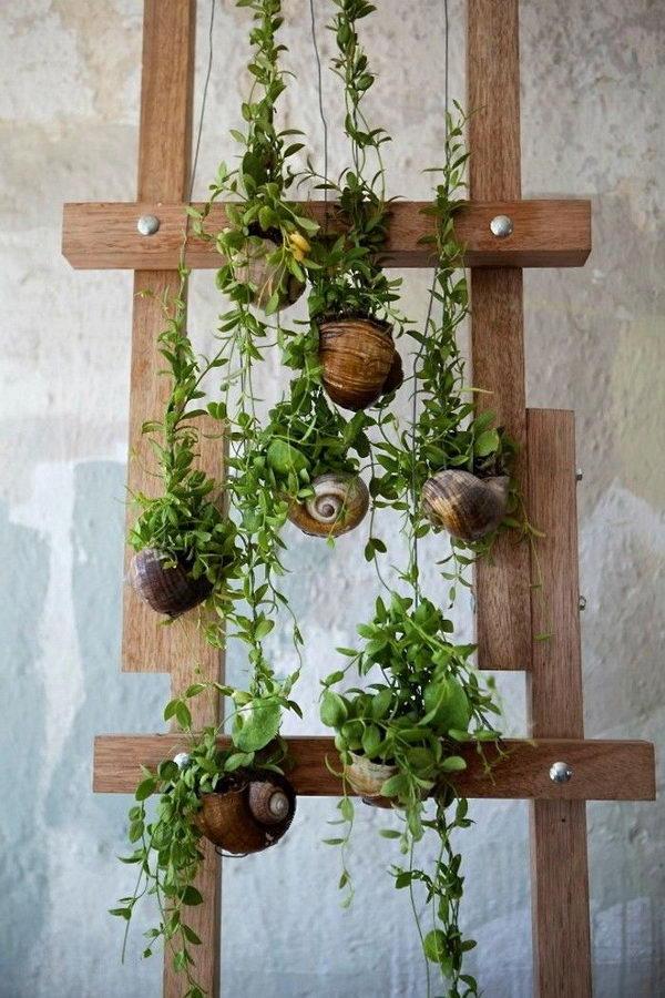 1 seashell planter