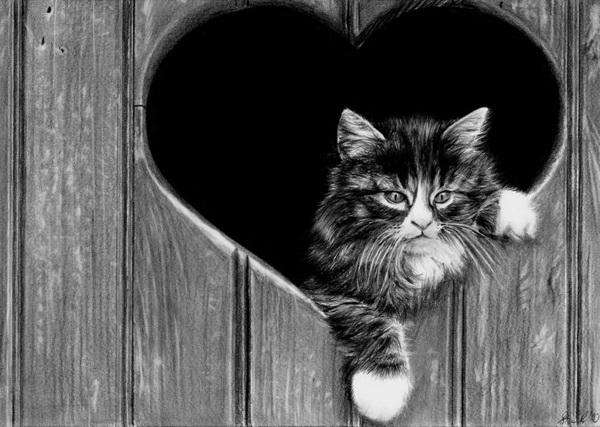 cat happy sounds