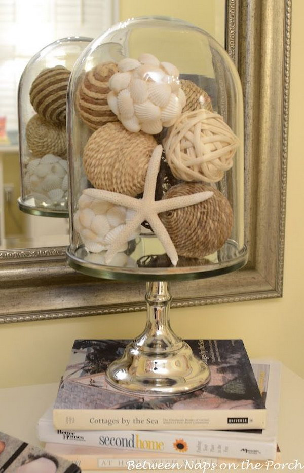 Creative Idea to Display Seashells