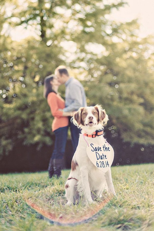 Save the Date Idea with Your Puppy