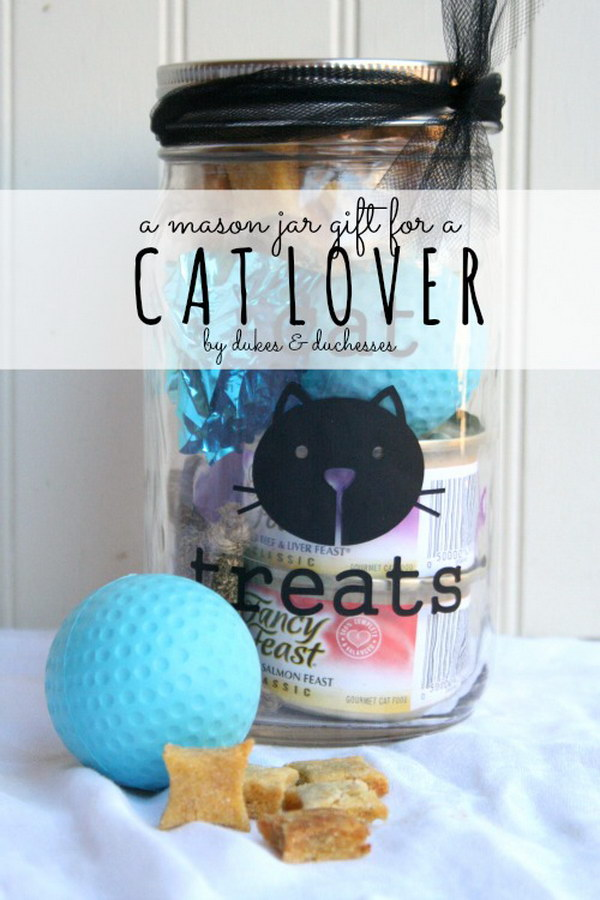 A Mason Jar Gift For A Cat Lover.