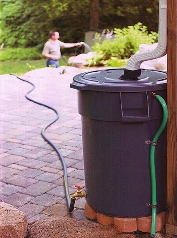 Make Your Own Rain Barrel to Water the Garden with out of a Heavy Duty Trash Can