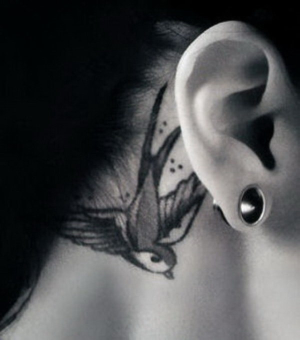 Swallow Behind The Ear Tattoo.
