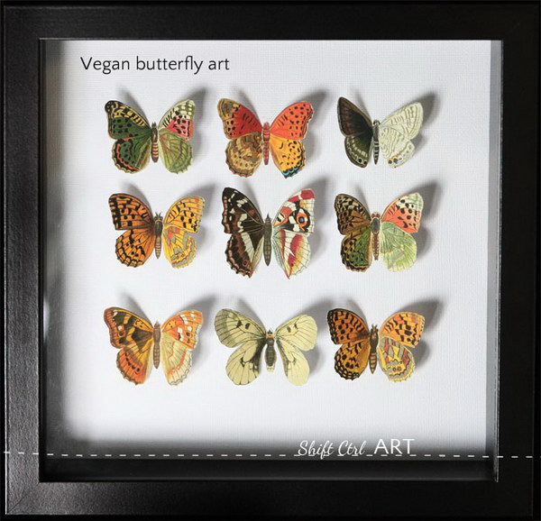 Vegan Butterfly Framed Art.